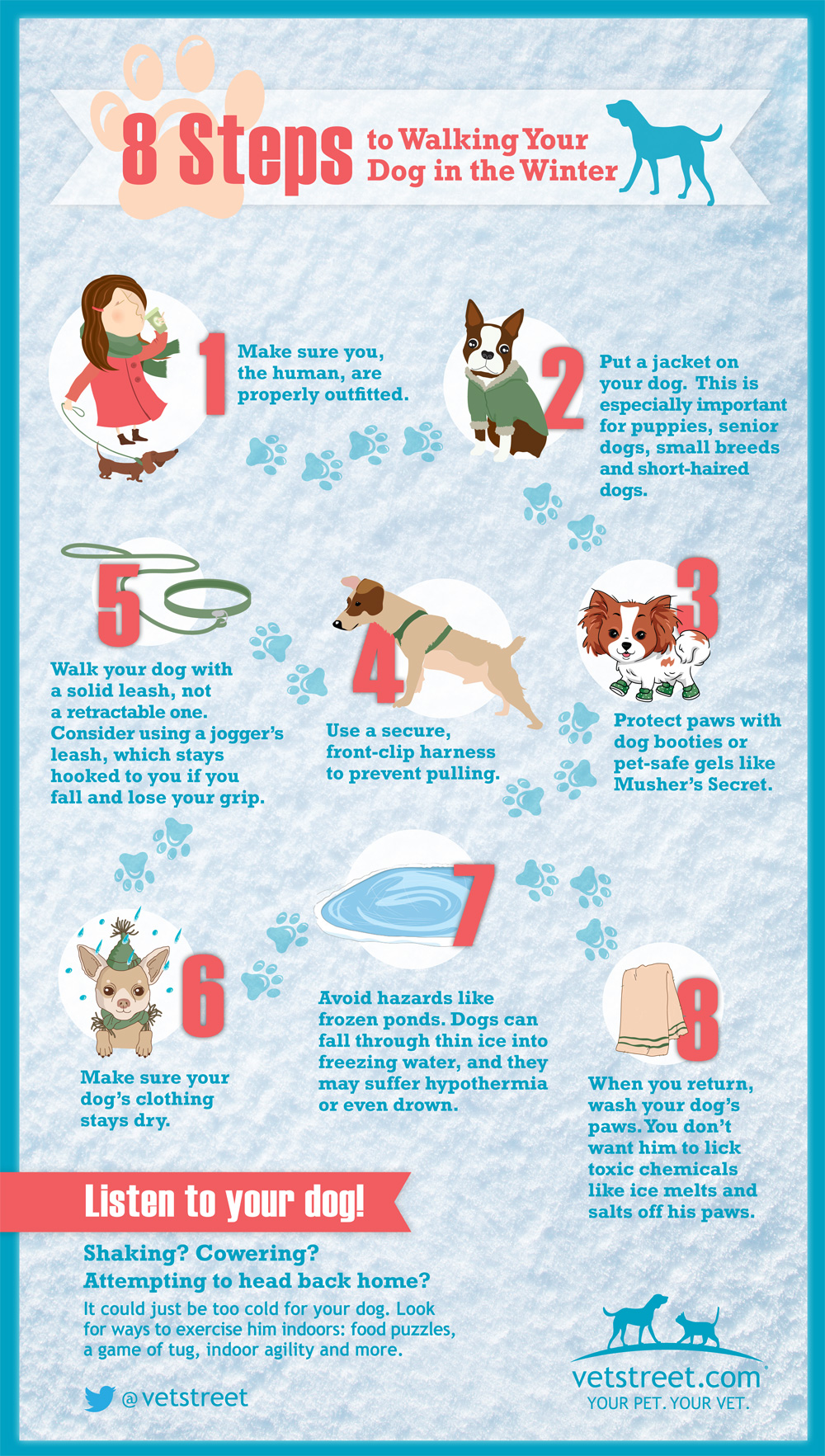 8 Steps to Walking the Dog in the Winter
