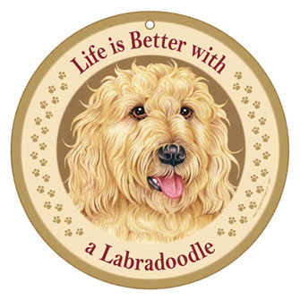 Life is Better With a Labradoodle
