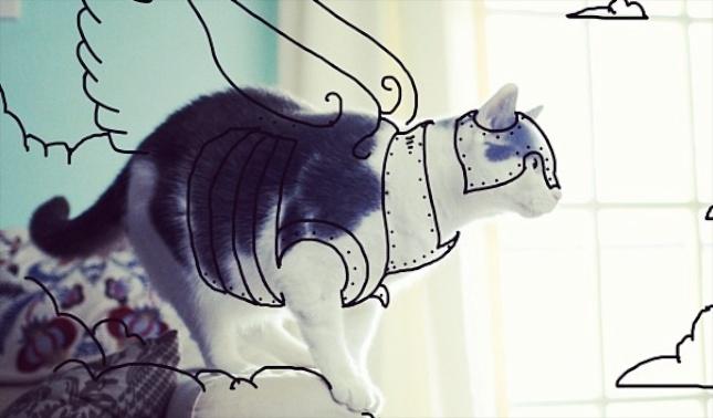 Instagram cat doodles superhero