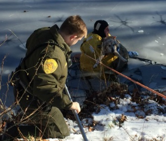 Delilah, a 19-year-old Shepherd mix, was rescued from an icy pond in Fairfield, Connecticut.