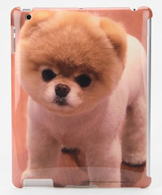 ipad case with dog
