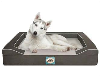 Sealy pet bed