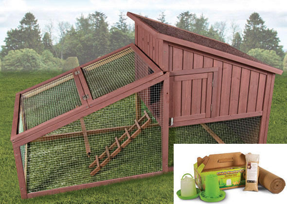 Ware Manufacturing Hen House with Yard