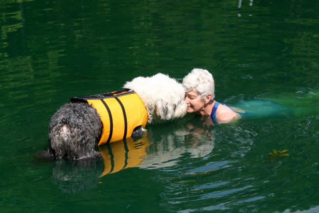 Do the Doggie Paddle