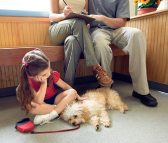 7 Veterinarian Pet Peeves