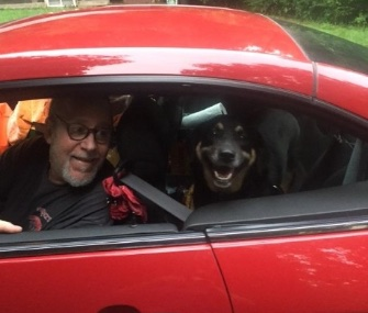 No more chasing cars for Butterbean. Here, she happily heads to her new home with Guy Lawrence-Edenheimer.