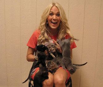 Carrie Underwood visits shelter kittens.