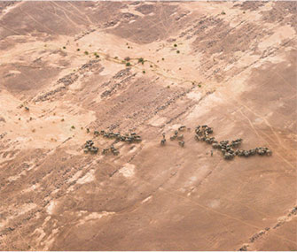 Elephants in the Gourma desert have adapted to living with little access to water.