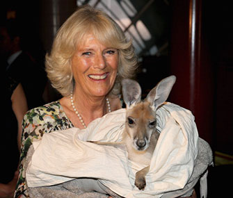 Camilla, Duchess of Cornwall, cuddles a kangaroo joey.