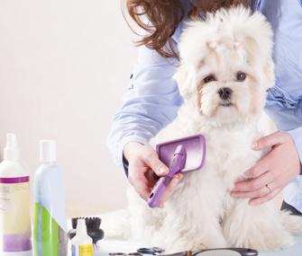Dog Bathing Products
