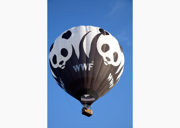 World Wildlife Fund Panda