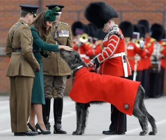 Kate Middleton greets the Irish Guards' mascot, Domhnal the Irish Wolfhound.