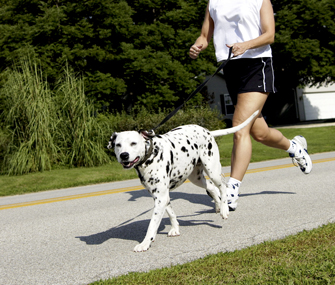 Jogging with the dog