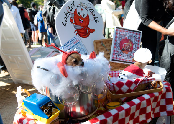 Halloween Dog Parade Lobster Bake