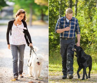 Man and Woman Walking Dogs