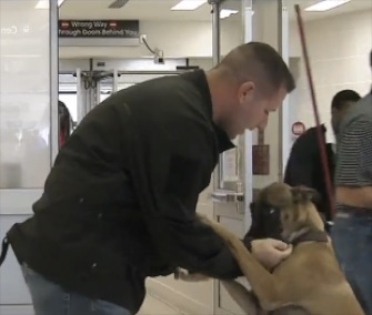 Hattie showed how happy she was to be reunited with Staff Sergeant Terry White at the Philadelphia International Airport Monday.