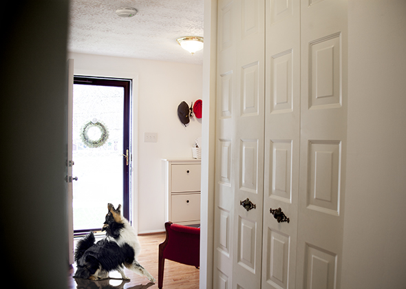 Things in the Home That Scare Pets Smoke Detector