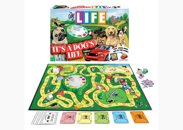 Game of Life Dog Edition