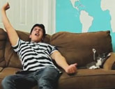 Cat copies owner on the couch