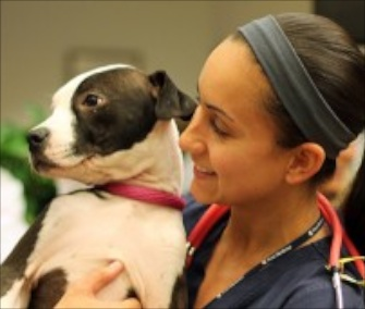 One of the dogs from the Pennsylvania SPCA brightens the day of a worker at the Hospital of the University of Pennsylvania.