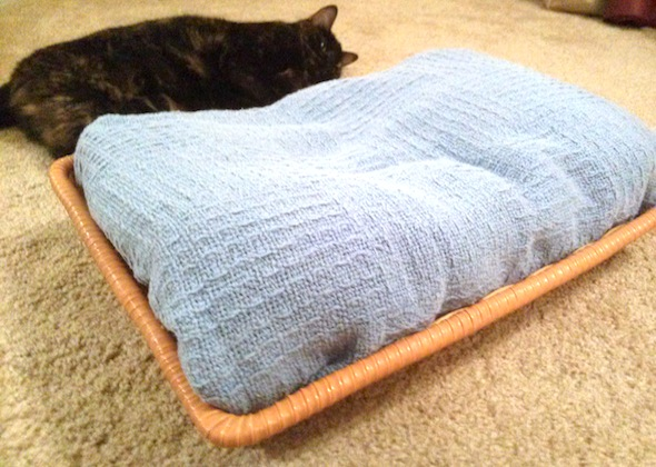 easy DIY cat bed with basket and blanket