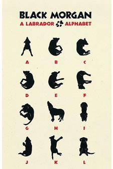 Labrador Alphabet