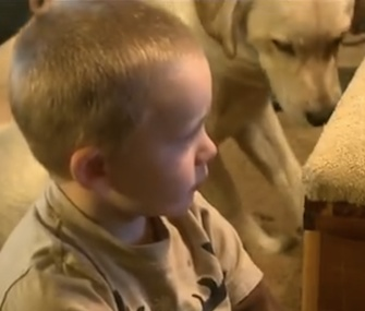 Chance the Lab stayed by 2-year-old Jakob's side while he was missing overnight.