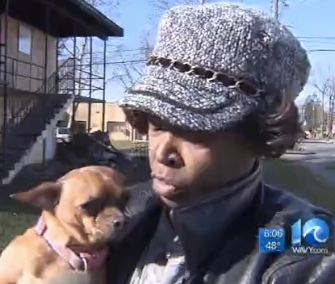 Taffy the Chihuahua ran across a parking lot to her owner the morning after a fire destroyed their apartment.