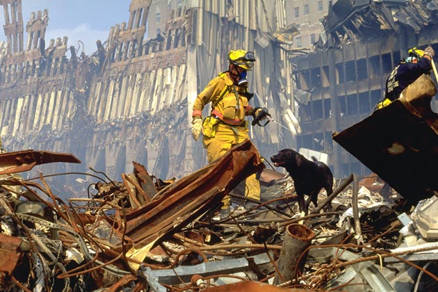 'Hero Dogs of 9/11' Television Special on Animal Planet