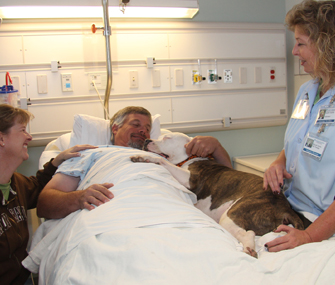 therapy dog in hospital bed with patient