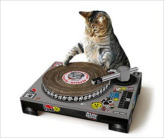 a cat dj with scratch pad