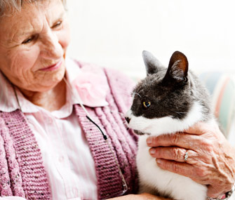 Senior woman petting cat