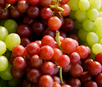 Grapes, insecticides, human medicines and many human foods are poisonous to pets