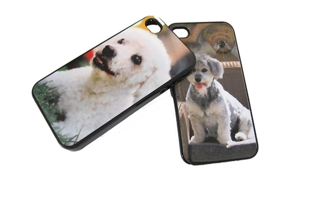 Customized iPhone Cover, Chief Furry Officer