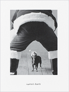 holiday card with dog