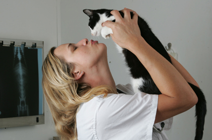 Patty Khuly and her cat