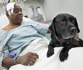 Cecil Williams says his guide dog, Orlando, saved his life when he fell off a subway platform in Manhattan.