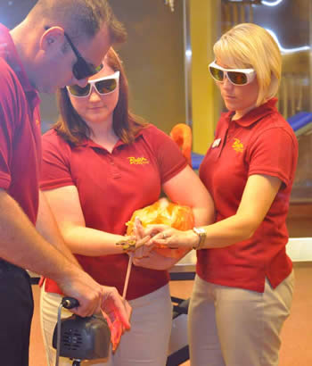 Flamingo cold laser therapy