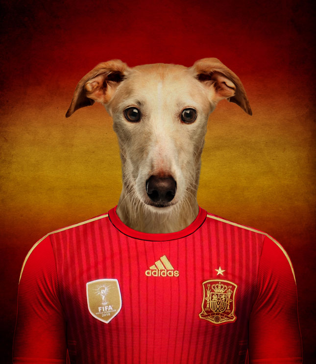World Cup Dog Spain