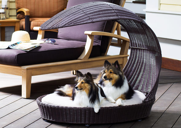 Refined Canine Outdoor Chaise Lounger