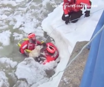 Members of the U.S. Coast Guard saved a Lab from the icy waters of Betsie Lake in Michigan Tuesday.