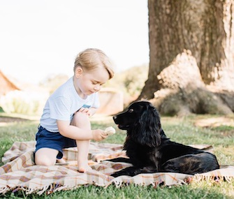 In a sweet photo, 3-year-old Prince George plays with Lupo.