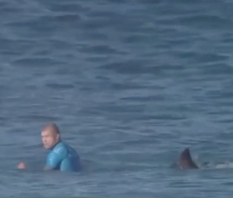 Australia pro surfer Mick Fanning fought off a shark attack at a competition in South Africa Sunday.