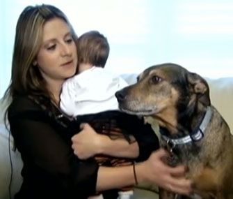 Duke, a rescue dog, alerted his owners when their infant stopped breathing.