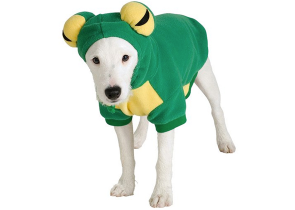 Dog Kermit Costume