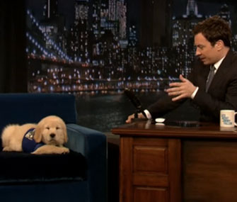 Jimmy Fallon puppy predictor Bruce Mackabee