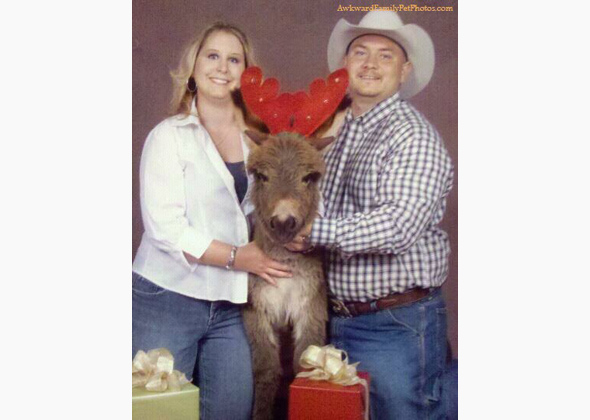 Couple with llama