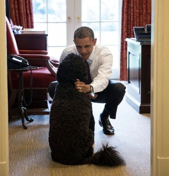 President Obama with First Dog Bo