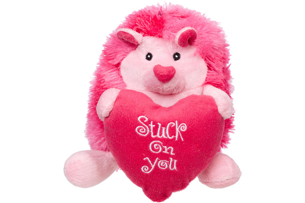 Petco Valentine's Stuck On You Hedgehog Dog Toy