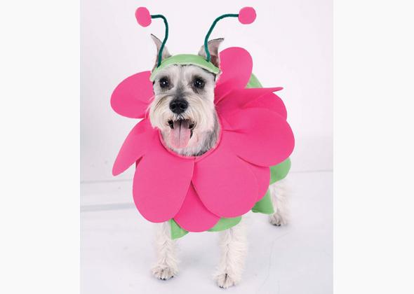 Spirit Halloween Bloomin Snout